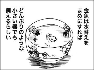 kfc00622-1.jpg