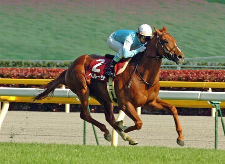 【競馬引退】ペルーサ、ルルーシュが引退、種牡馬に。