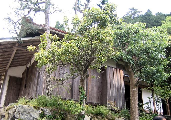 般若寺のお堂