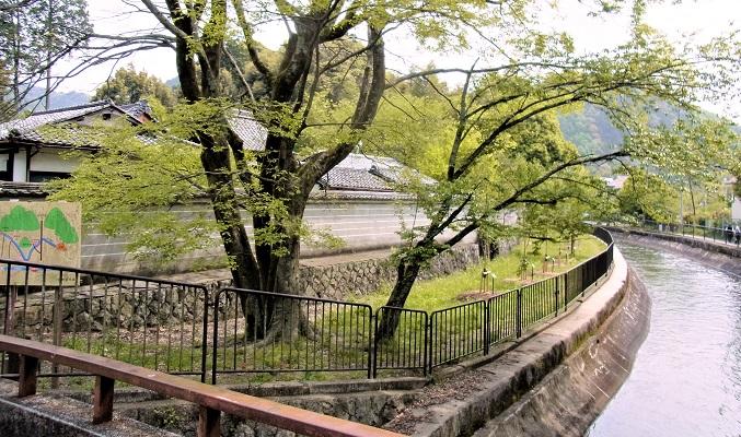 琵琶湖疎水べりにある安祥寺