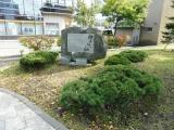 JR千歳駅 仲よしの松 全景