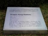 福岡市営姪浜駅 「Dragon King Rabbits」 説明