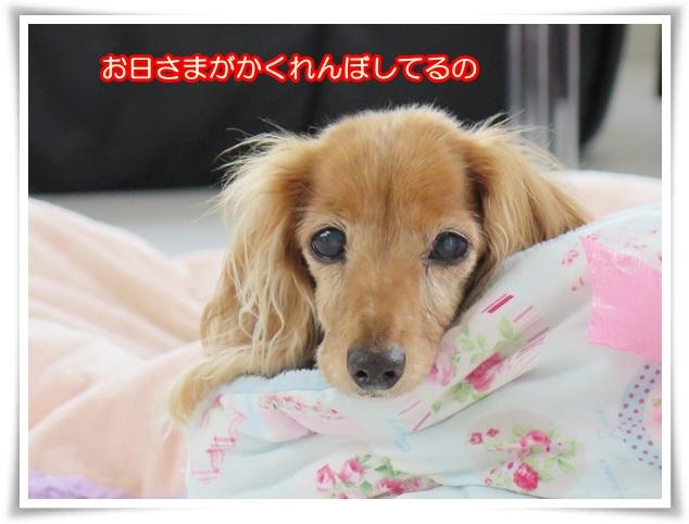 1_20160621204554612.jpg