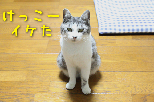 20161013090213a44.png
