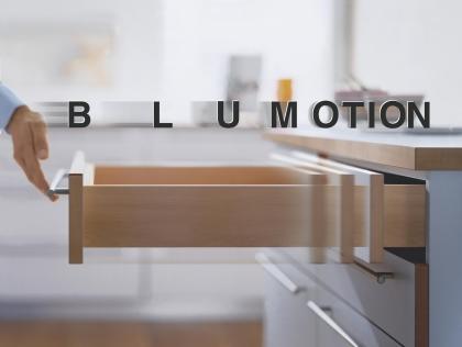 blumotion2.jpg