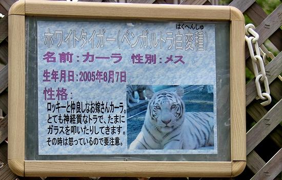 東武動物公園_28
