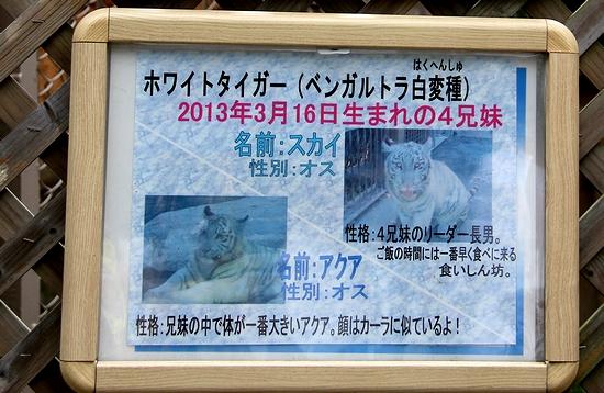 東武動物公園_29