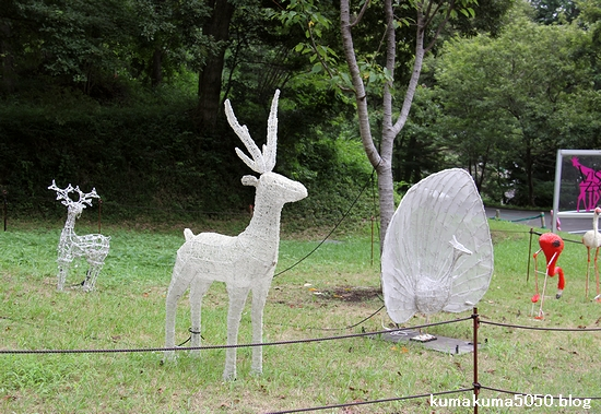 多摩動物公園_10