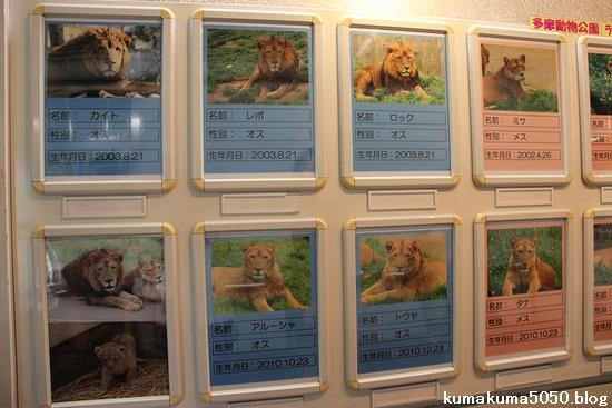 多摩動物公園_18