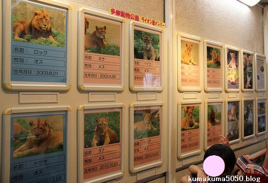多摩動物公園_19