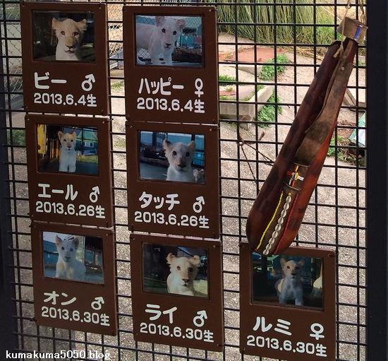 姫路セントラルパーク_43