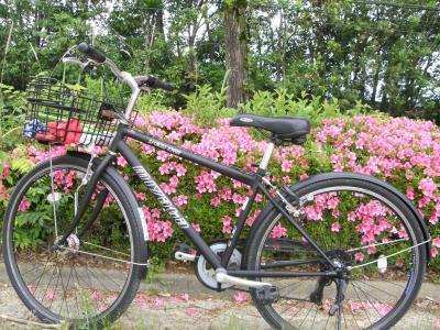 Bike1_convert_20160526161850.jpg