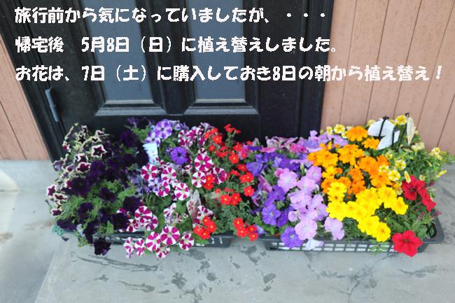 001-76448-8765-876799.jpg