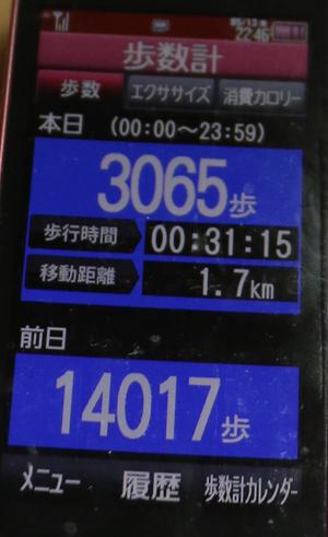 004-05-13.jpg
