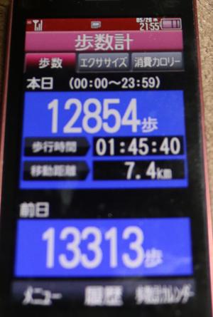010-05-26.jpg