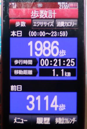 036-06-09.jpg