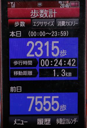 041-09-11.jpg