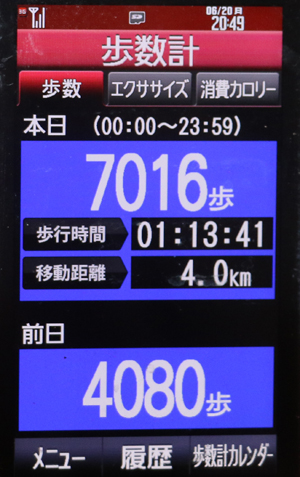 077-06-20.jpg