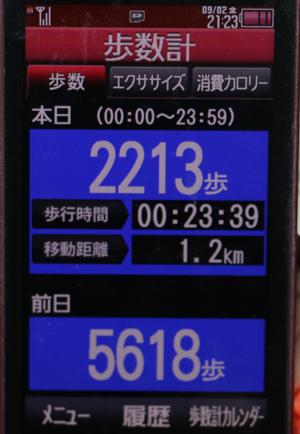 697-09-02.jpg