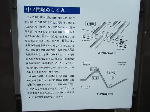 DSCF7422a.jpg