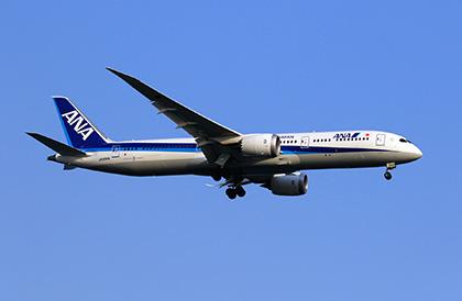 ANAマイレージクラブ特典航空券のフライト