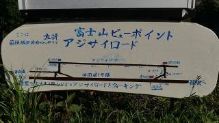 20160514旧東海道原生の森048