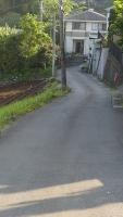 20160514旧東海道原生の森050