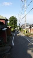 20160514旧東海道原生の森067