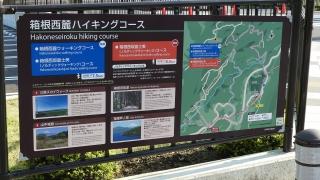 20160514旧東海道原生の森070