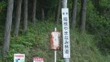 20160514旧東海道原生の森074