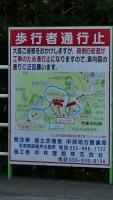 20160514旧東海道原生の森078