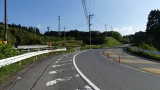 20160514旧東海道原生の森084