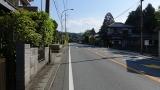 20160514旧東海道原生の森087