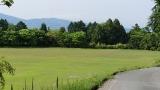 20160514旧東海道原生の森098