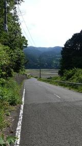 20160514旧東海道原生の森106