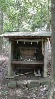 20160514旧東海道原生の森128