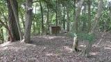 20160514旧東海道原生の森127