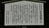 20160514旧東海道原生の森138