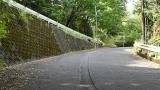 20160514旧東海道原生の森139
