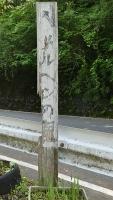 20160514旧東海道原生の森140