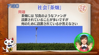 160504合格モーニング 紺野あさ美 (4)