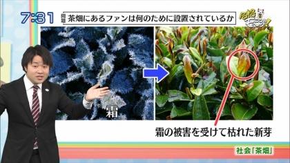 160504合格モーニング 紺野あさ美 (3)