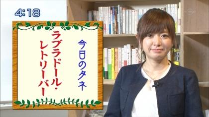 160510朝ダネ 紺野あさ美 (5)