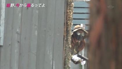 160727紺野、今から踊るってよ 紺野あさ美 (10)