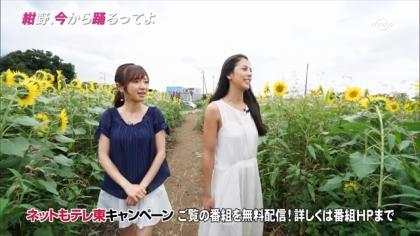 160908紺野、今から踊るってよ 紺野あさ美 (7)
