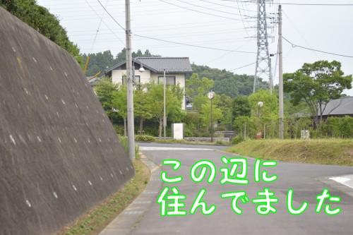 20160621_4.jpg