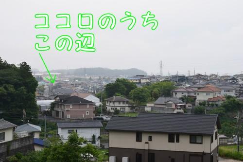 20160621_6.jpg