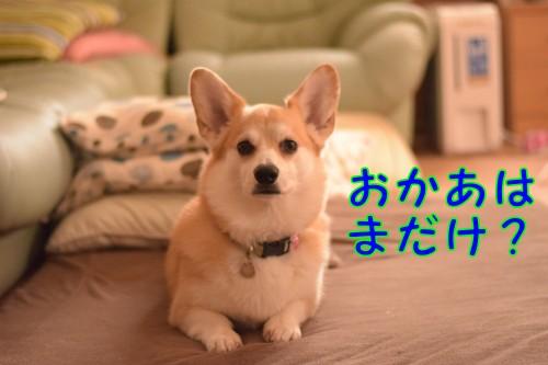 20160630_2.jpg