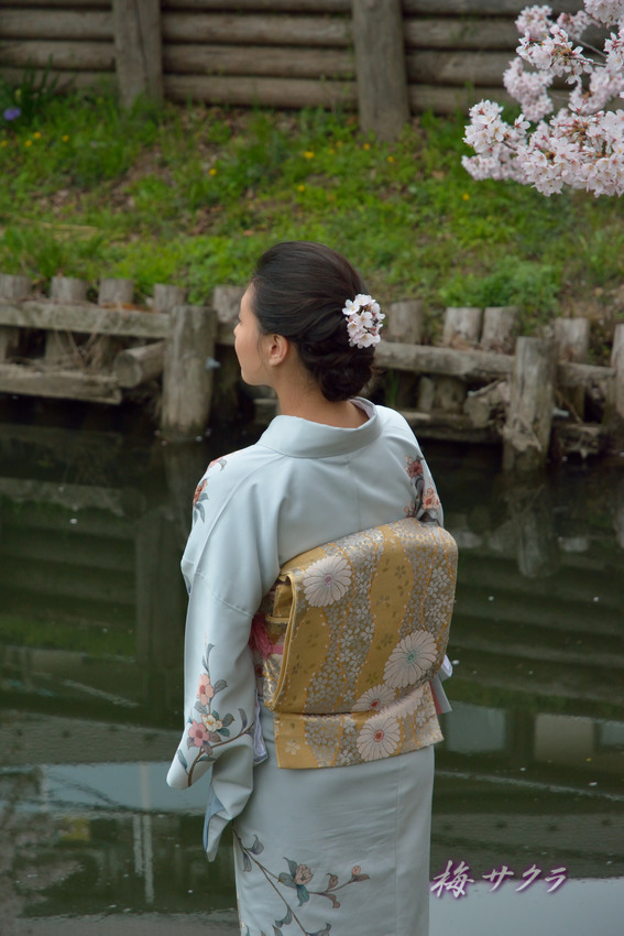 小江戸川越桜祭り2(8)変更済