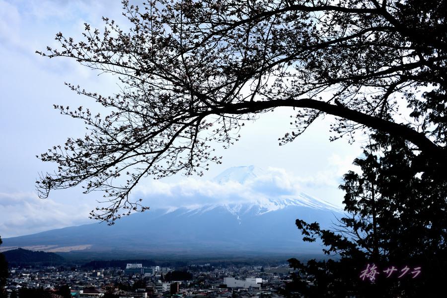 新倉山1(1)変更済